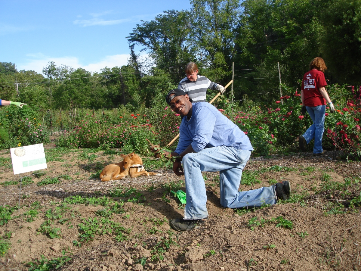 Photo of Stanley Kingsberry at Cullowhee Community Garden