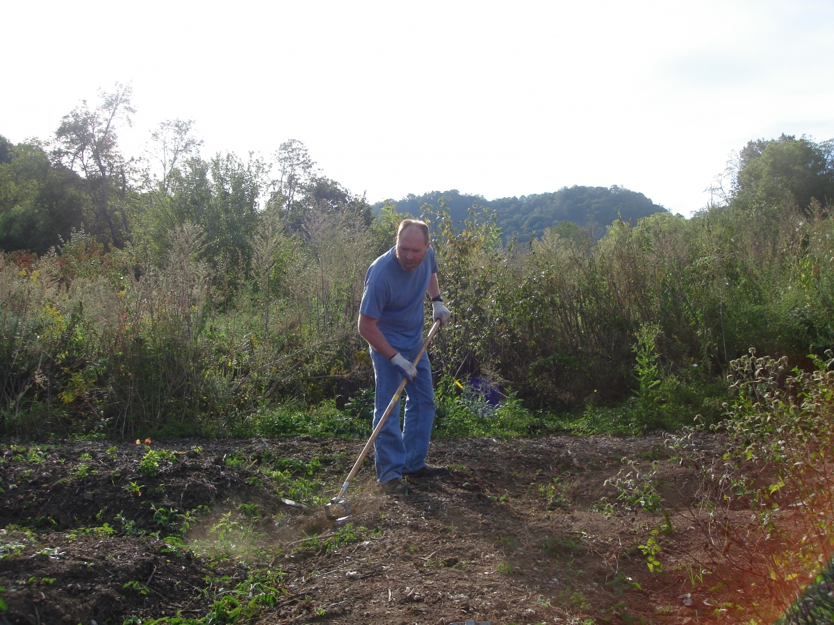 Another SSS Gardening Club member helping at Cullowhee Community Garden